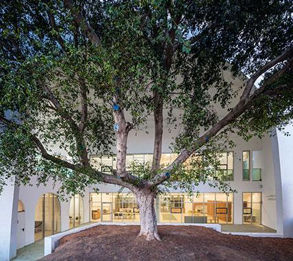 PHOTO TOUR: Sderot Medical Rehabilitation Center